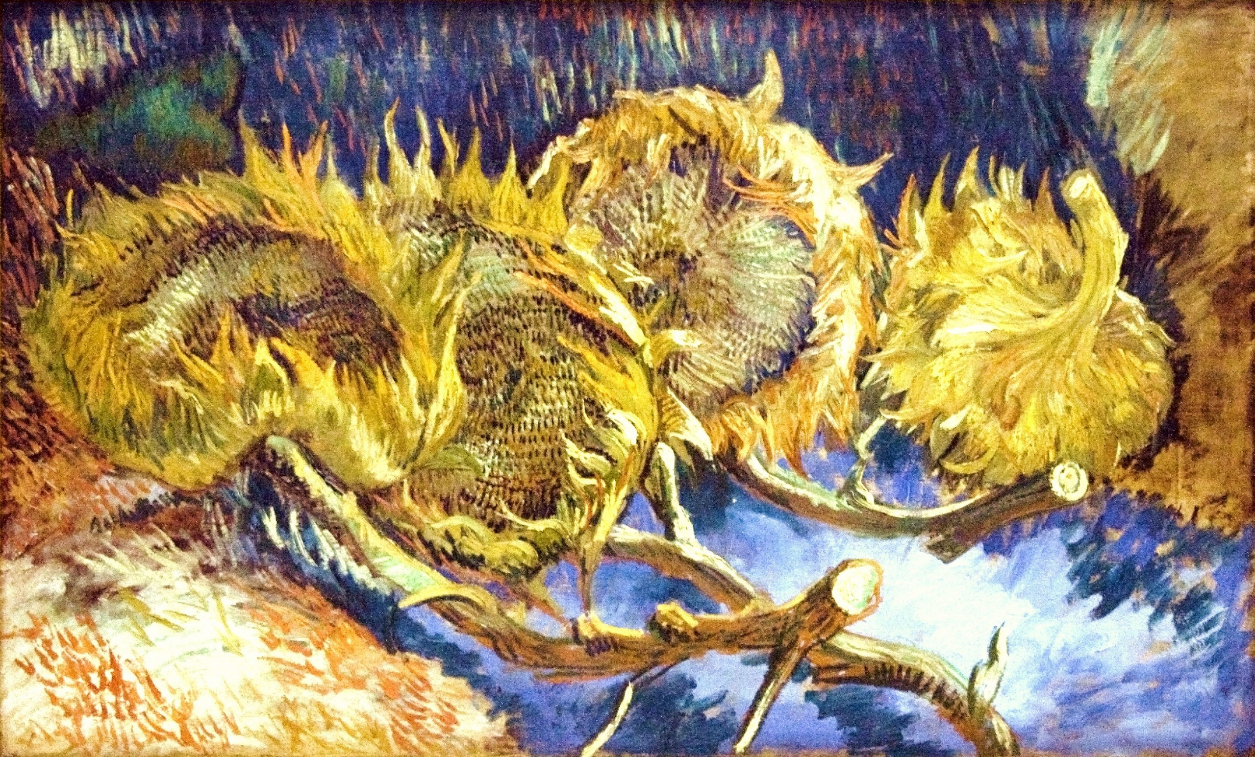 Cuadros De Vango Vincent Van Gogh Images Sunflowers Hd Wallpaper And