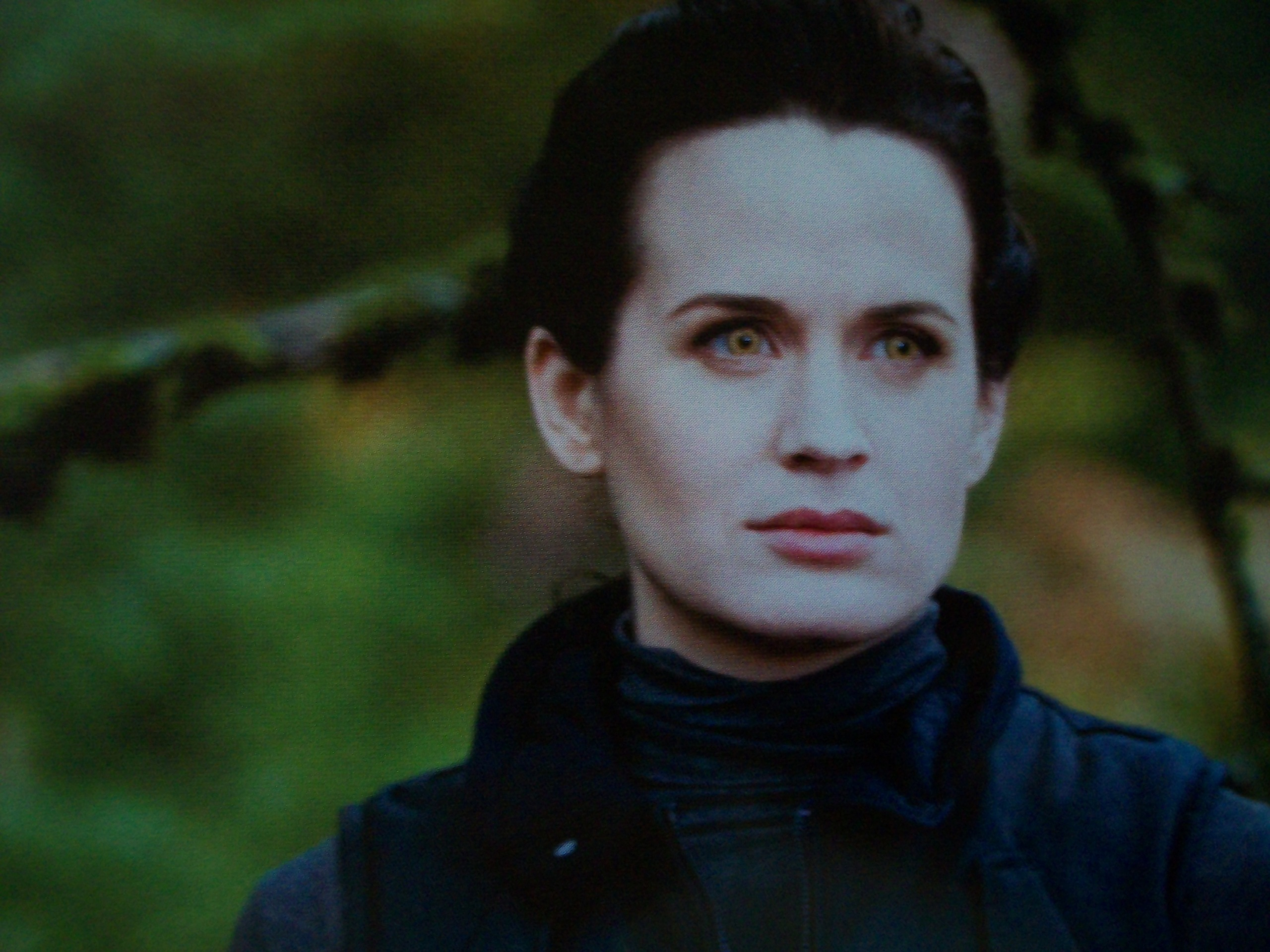 Breaking Dawn Wallpaper Hd Esme Cullen Images Esme Eclipse Movie Companion Hd