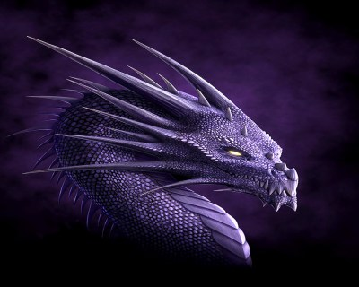 Dragons images Dragon Wallpaper HD wallpaper and background photos (13975574)