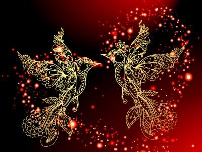 Love Birds HD Wallpaper | Background Image | 2560x1920 | ID:208329 - Wallpaper Abyss