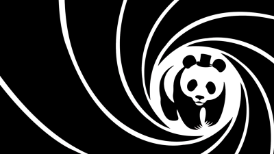 Panda HD Wallpaper | Background Image | 1920x1080 | ID:235499 - Wallpaper Abyss