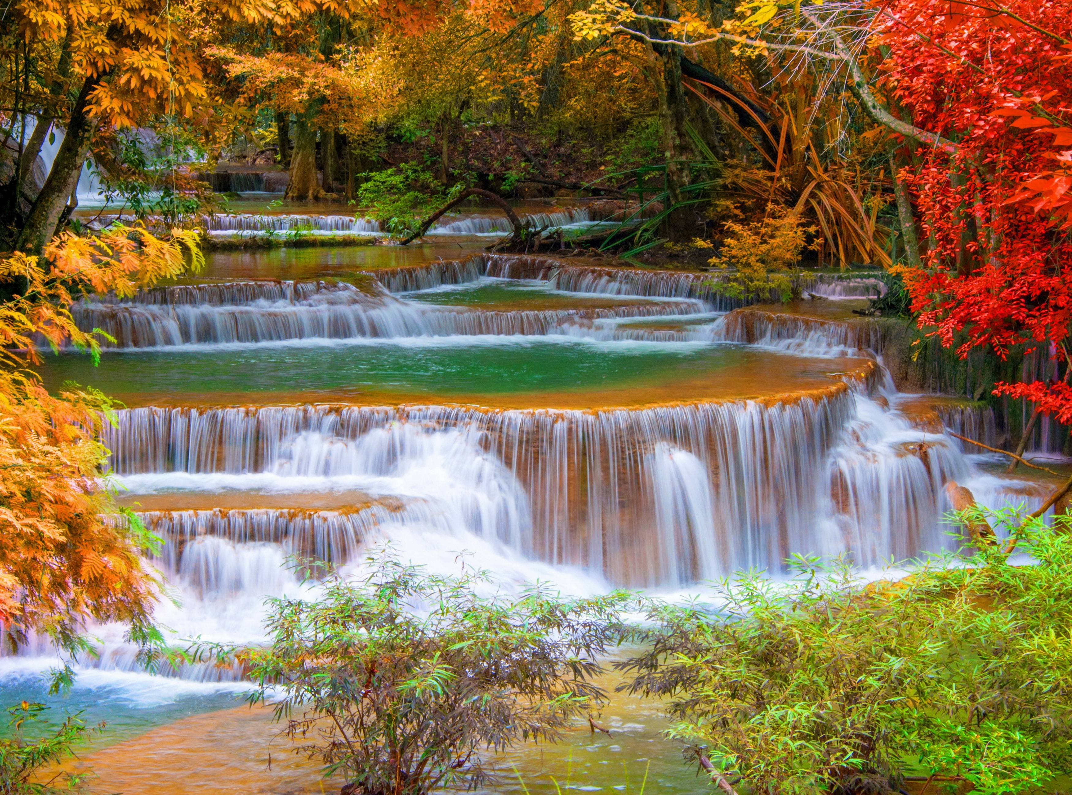 Fall Wallpaper Iphone 4 The Seasons Full Hd Wallpaper And Background Image