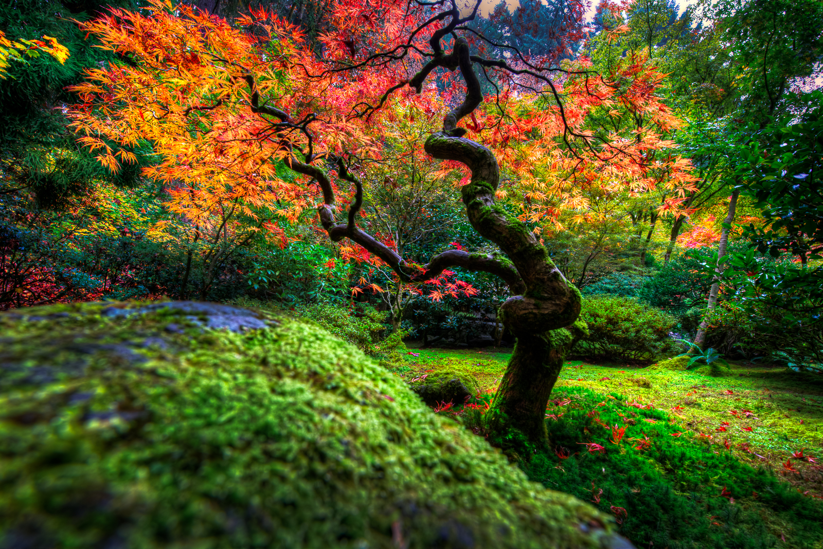 Great Falls Wallpapers Hd Widescreen Autumn Japanese Garden Wallpaper And Background Image