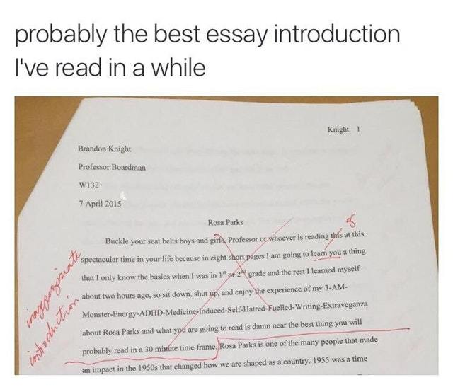 The best essay introduction I\u0027ve read - Meme by KnightOfCydonia
