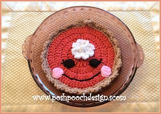 Ravelry Happy Pumpkin Pie Pot Holder Pattern By Sara Sach