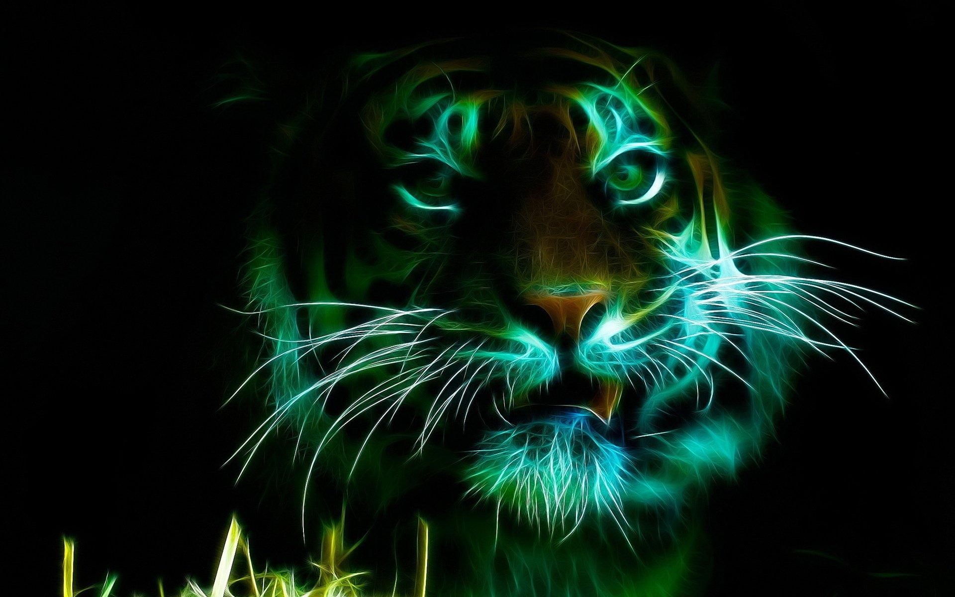 Neon Animal Print Wallpaper Tigre Fond D 233 Cran Hd Arri 232 Re Plan 1920x1200 Id