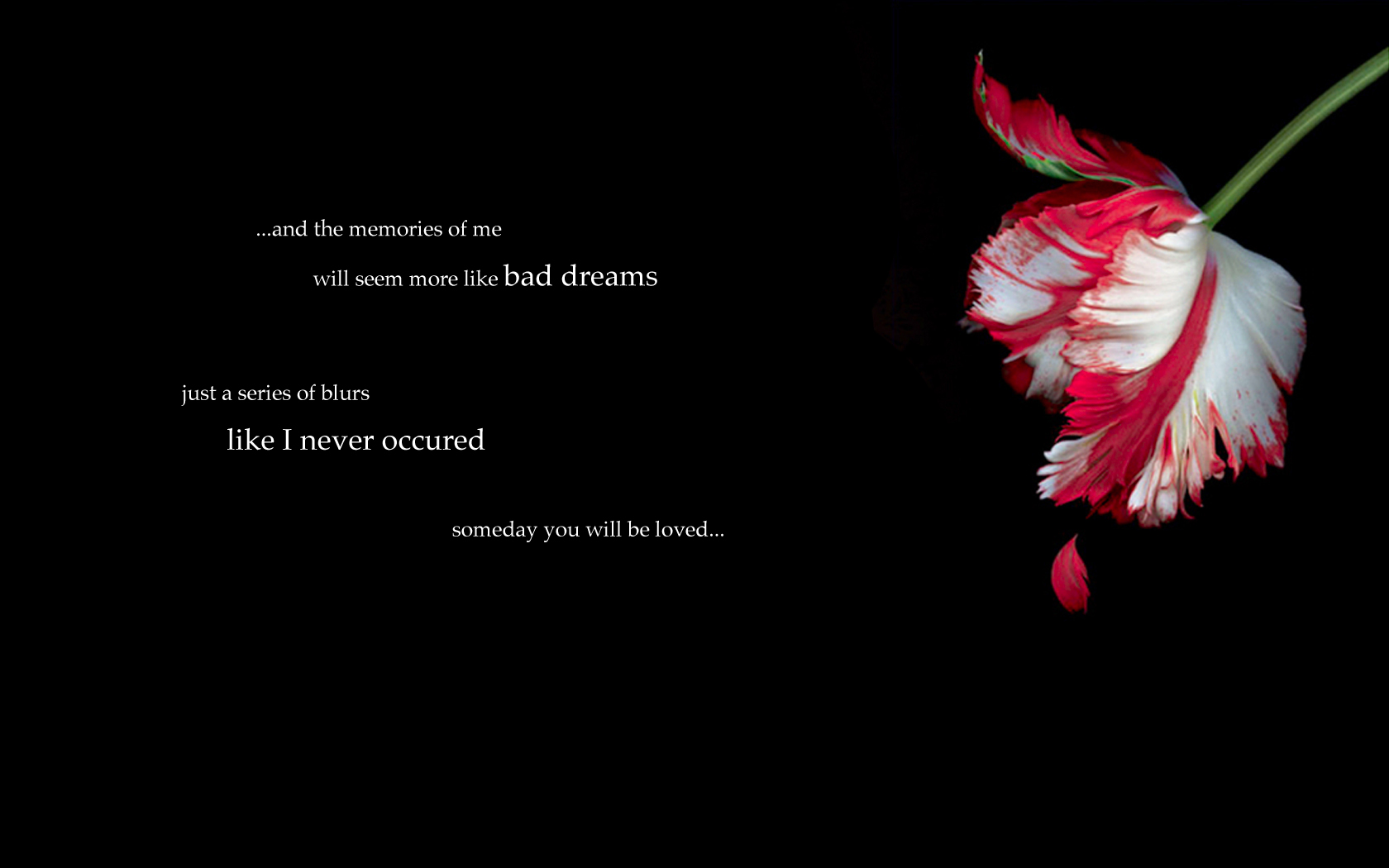 3840x1080 Hd Wallpapers Sad Quote Emo Wallpaper And Background Image 1680x1050 Id 285426