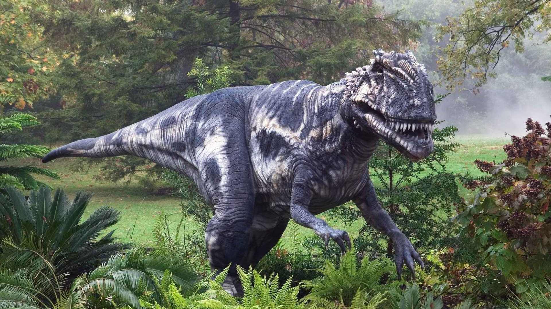 Yugioh Iphone Wallpaper Tyrannosaurus Rex Fond D 233 Cran Hd Arri 232 Re Plan