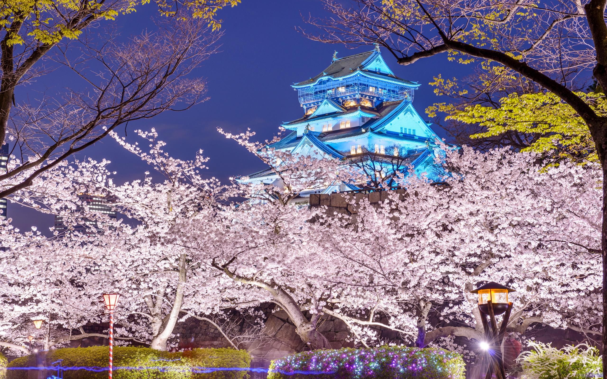 Cute Rainy Weather Wallpapers Osaka Castle Hd Wallpaper Background Image 2560x1600