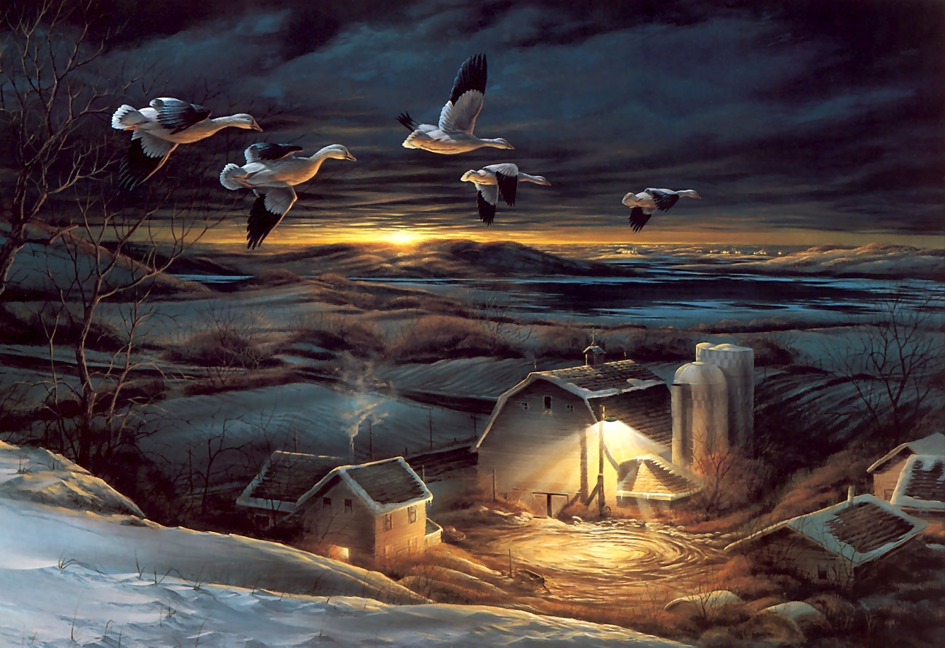 Falling Snow Wallpaper Animated Iphone Geese Flying South Wallpaper And Background Image