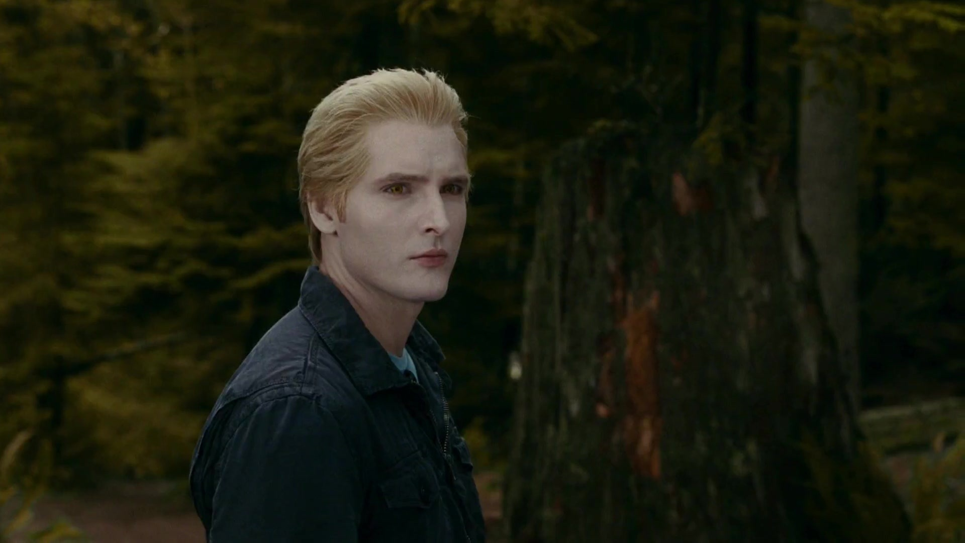 Theresa Blog Cullen Twilight Edward Carlisle Characters Bella