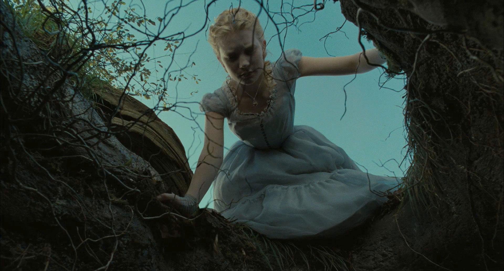 Falling Down The Rabbit Hole Wallpaper Alice In Wonderland 2010 Images Alice In Wonderland Hd