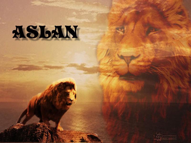 Angry Lion Wallpaper Hd 1080p Aslan Images Aslan The King Of Narnia Hd Wallpaper And