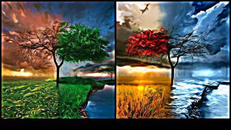 4k Fall Michigan Wallpaper Flowersforever Images Seasons Wallpaper Wallpaper And