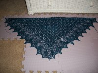 Bad Cats, Good Knits: Echo Flower Shawl