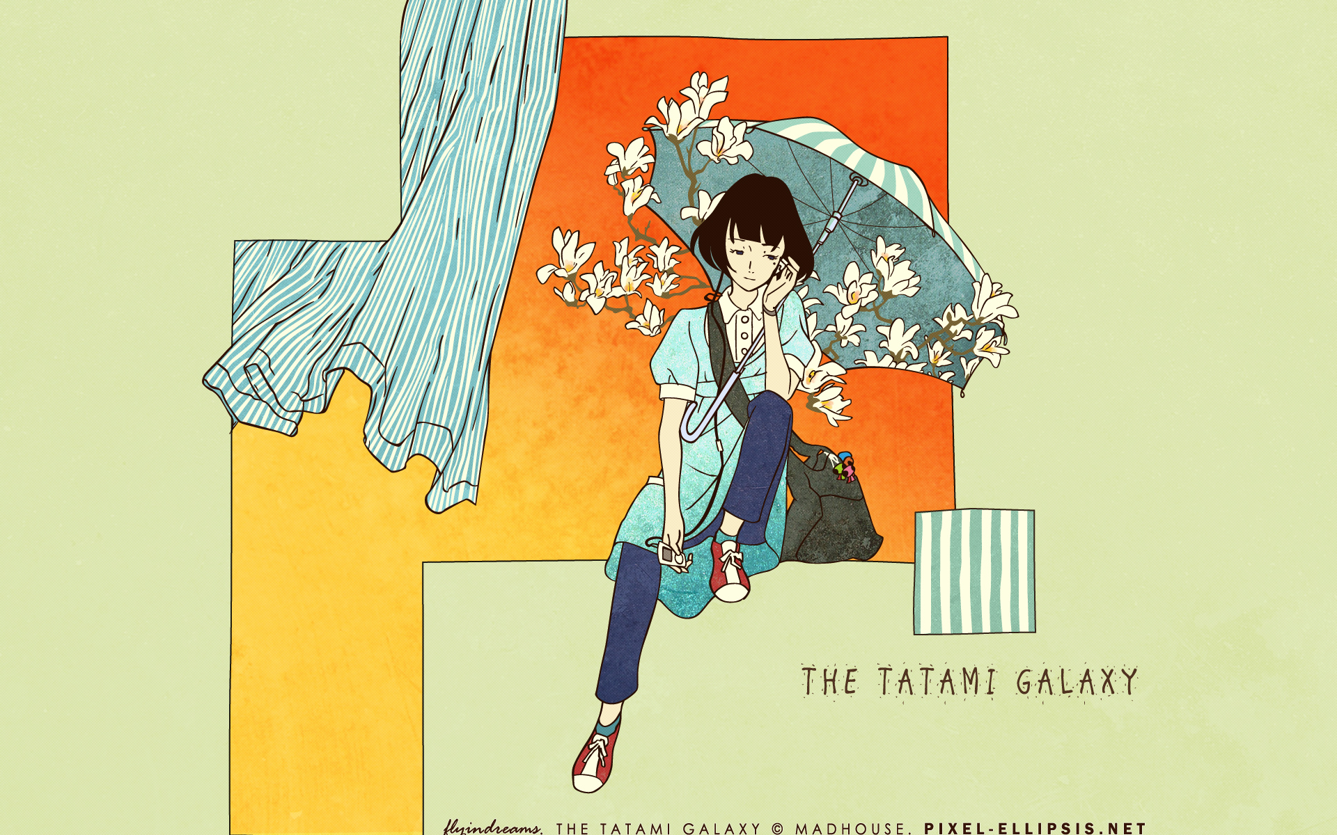 Cool Lion Wallpapers Hd The Tatami Galaxy Full Hd Wallpaper And Background Image