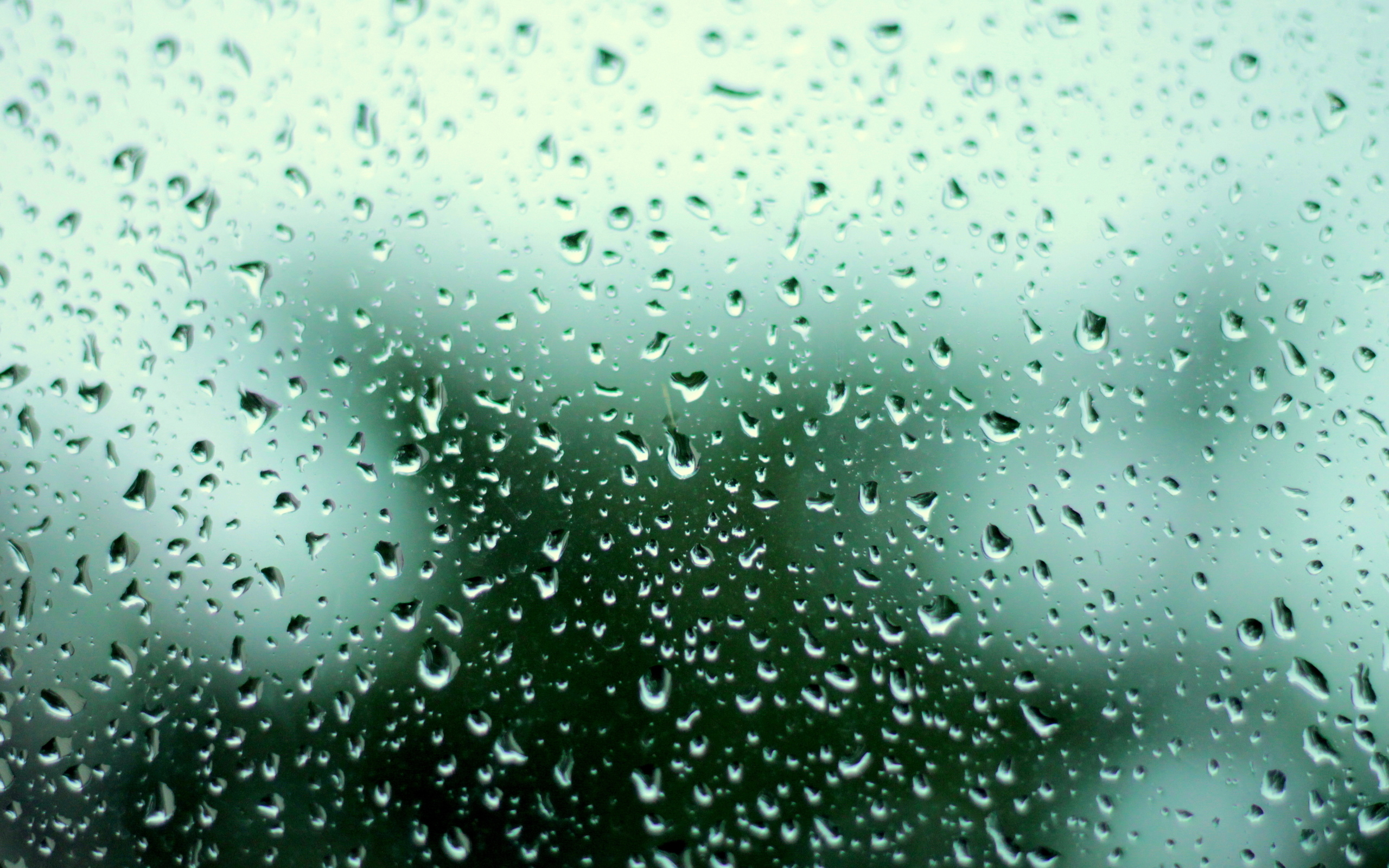 Raindrop Wallpaper Iphone X Raindrops Hd Wallpaper Background Image 2560x1600 Id
