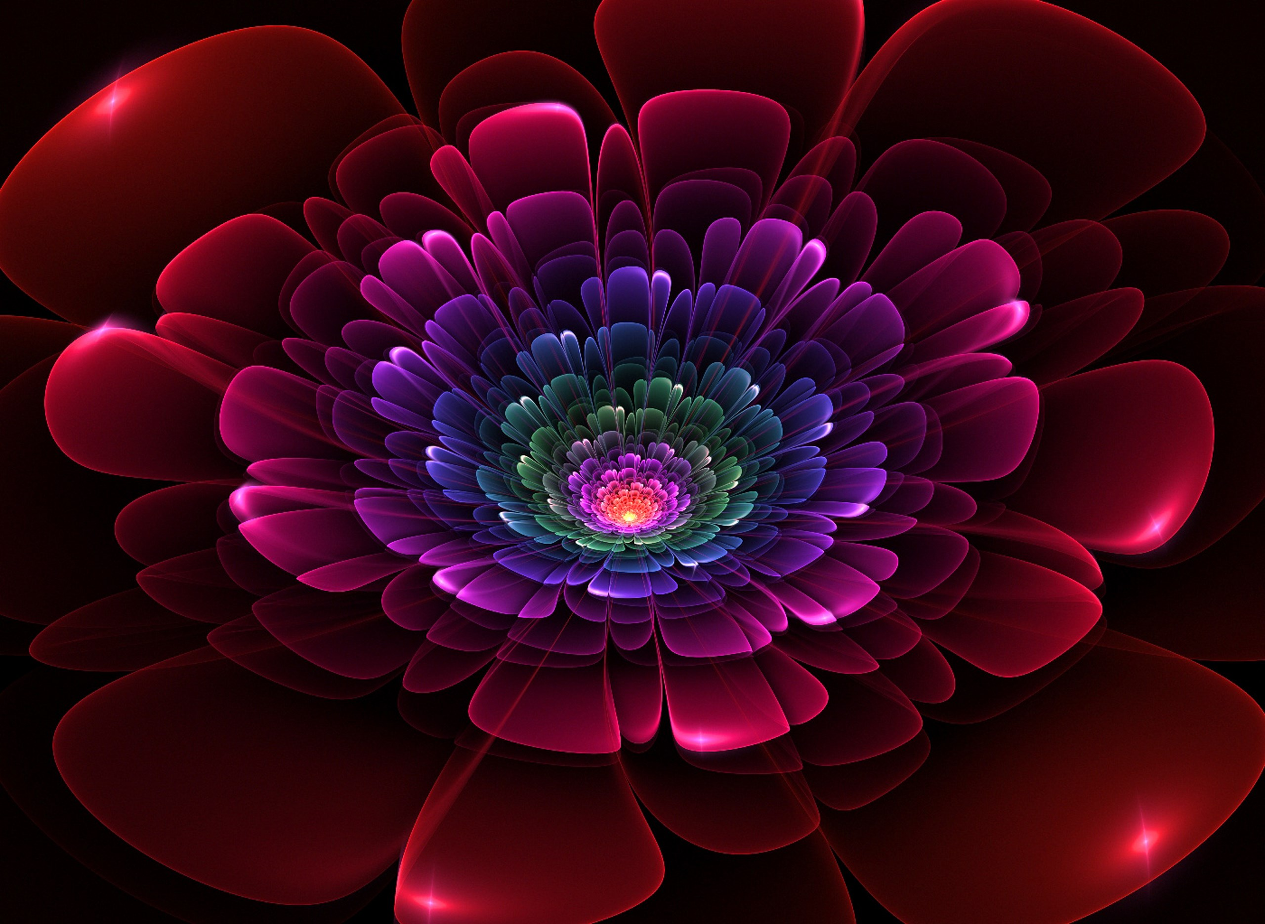 How To Use A Gif As A Wallpaper Iphone Fractal Full Hd Wallpaper And Background 2560x1871 Id