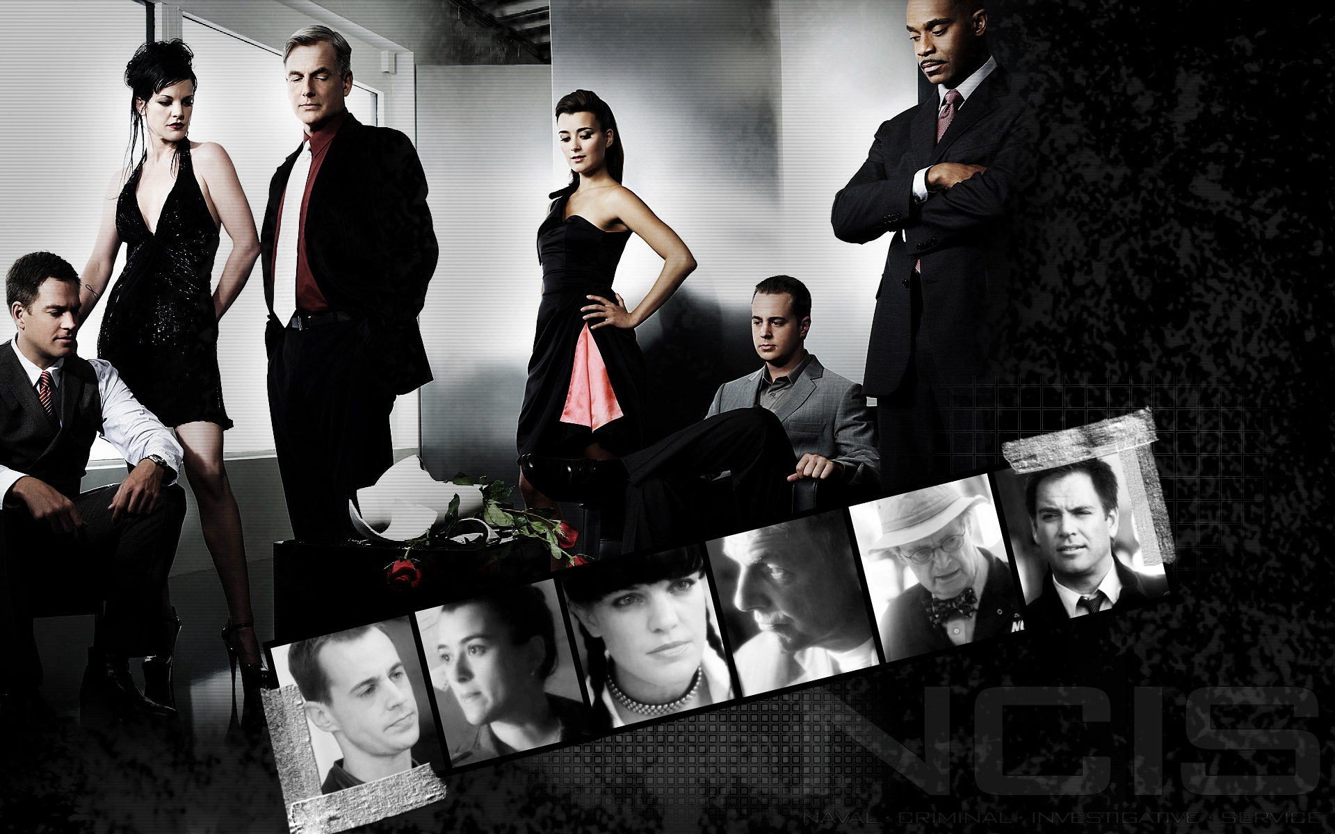 Los Angeles Wallpaper Iphone 6 Plus Ncis Hd Wallpaper Background Image 1920x1200 Id