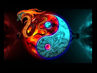 Yin & Yang Wallpaper and Background Image   1600x1200   ID:434541 - Wallpaper Abyss