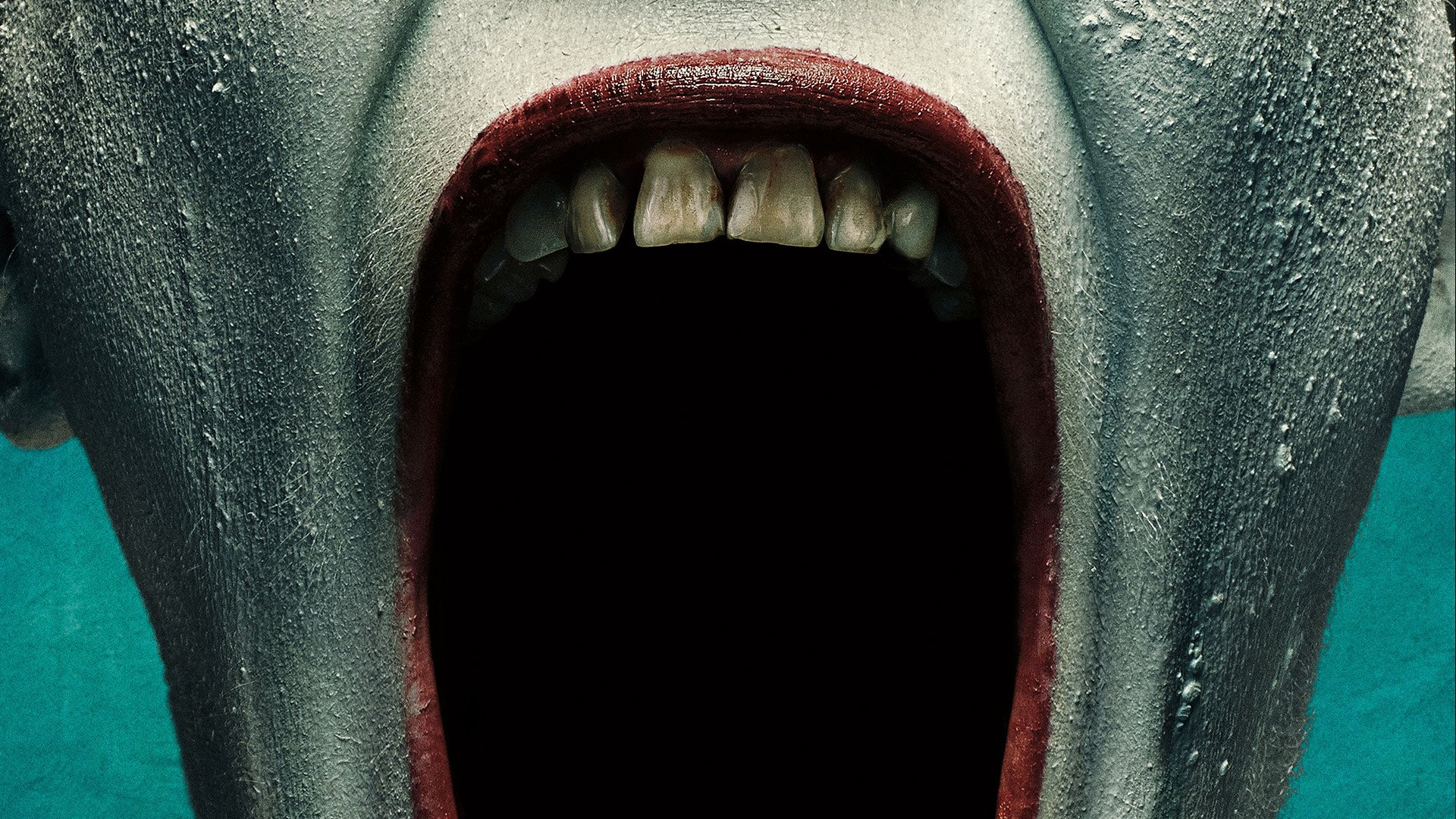 American Horror Story Wallpaper Iphone American Horror Story Freak Show Full Hd Wallpaper And