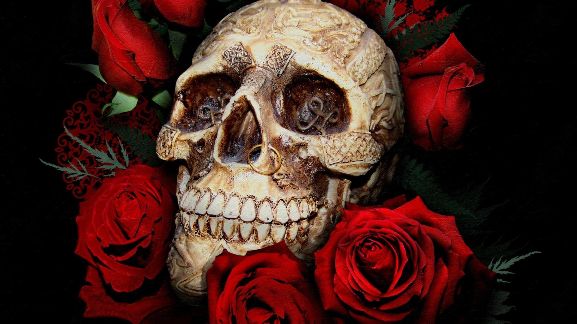 Cool 3d Flower Wallpaper Skull With Piercing And Roses Full Hd Wallpaper And