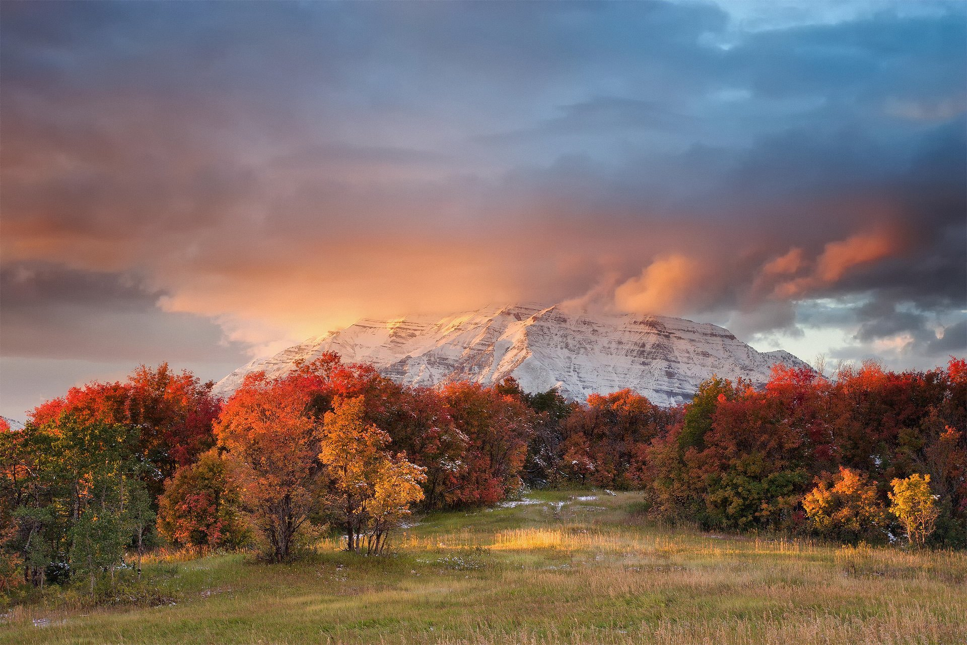 Fall Foliage Hd Wallpaper Cloudy Sunset Over Autumn Forest Hd Wallpaper Background