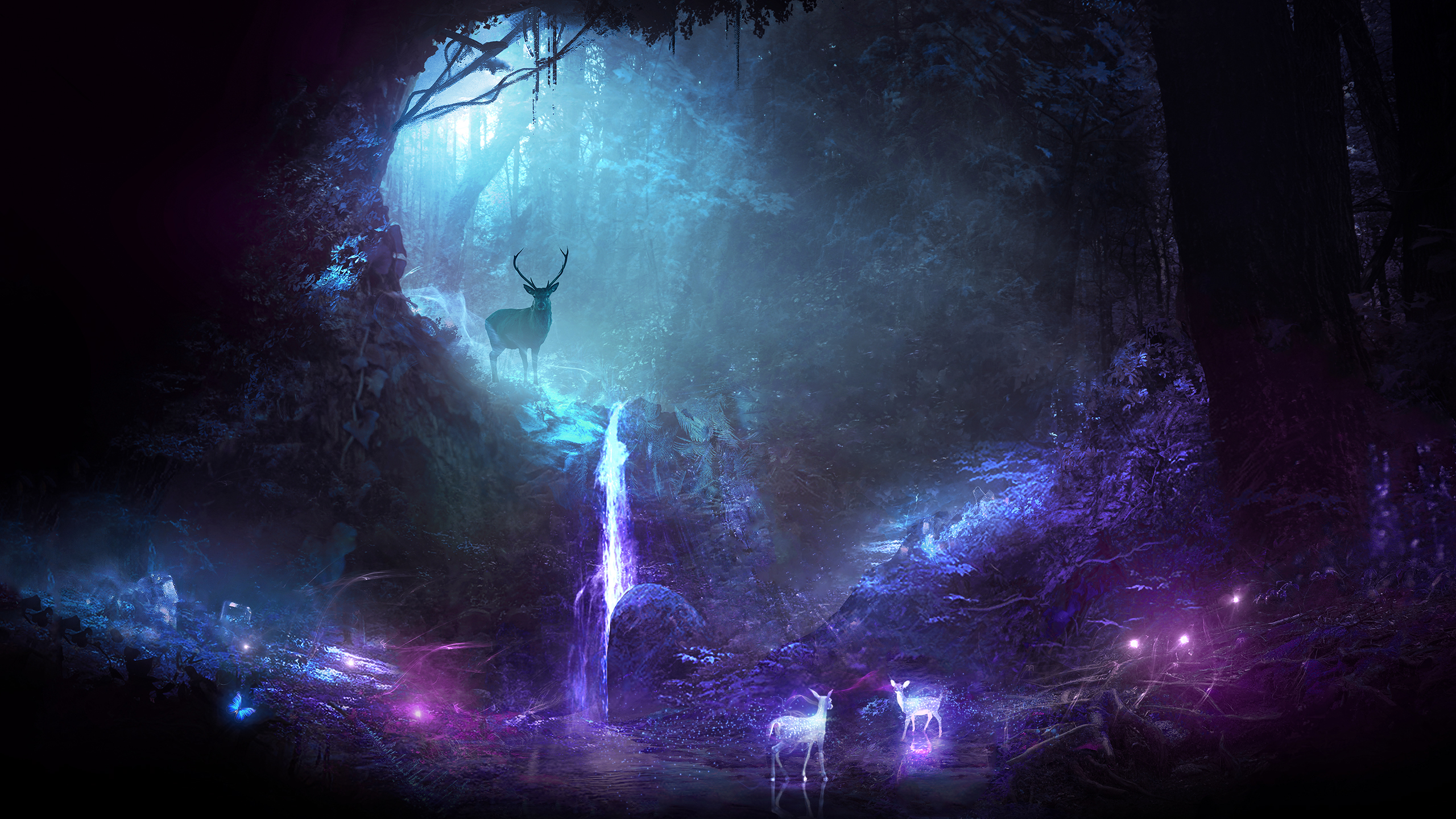 Cute Background Wallpaper For Computer Christmas Lights Animal Hd Deer Hd Wallpaper Background Image 2560x1440 Id