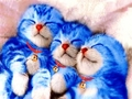 Doraemon The Cat Like Robot From The 24th Century Of The