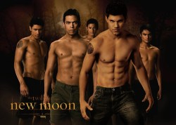 The Twilight Saga: Wolves The Wolf Pack Pictures