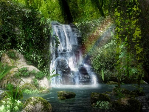 Cute Couple Kisses Wallpaper Beautiful Pictures Images Waterfall Rainbow Forest Hd