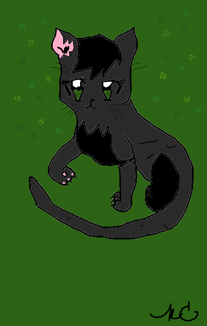 Cute Cats Image Wallpaper Hollyleaf Images Cute Hollyleaf Hd Wallpaper And