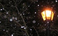 Lamp Post HD Wallpaper | Background Image | 1920x1200 | ID ...