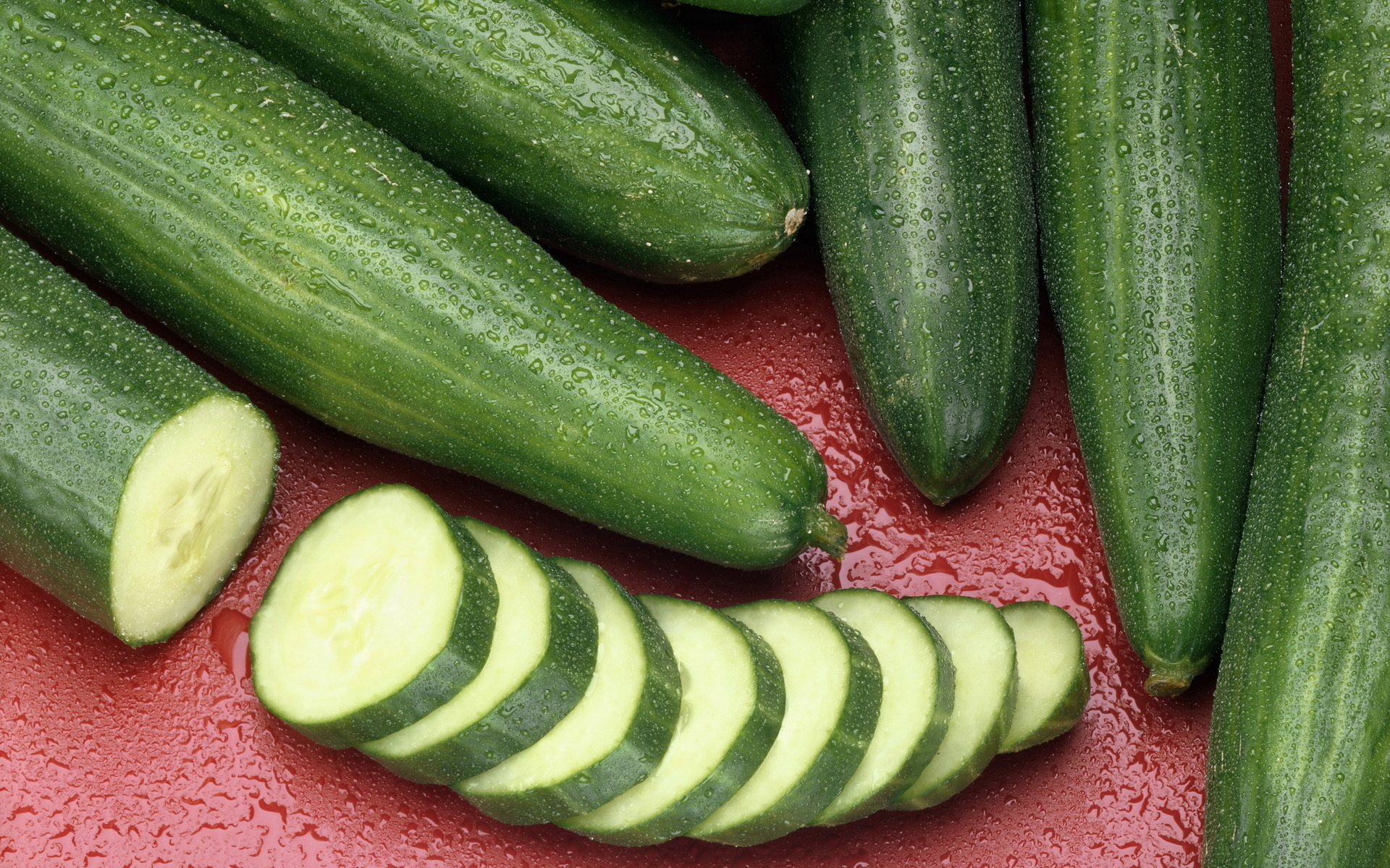 Hd Wallpaper Monsoon Cucumber Full Hd Wallpaper And Background Image