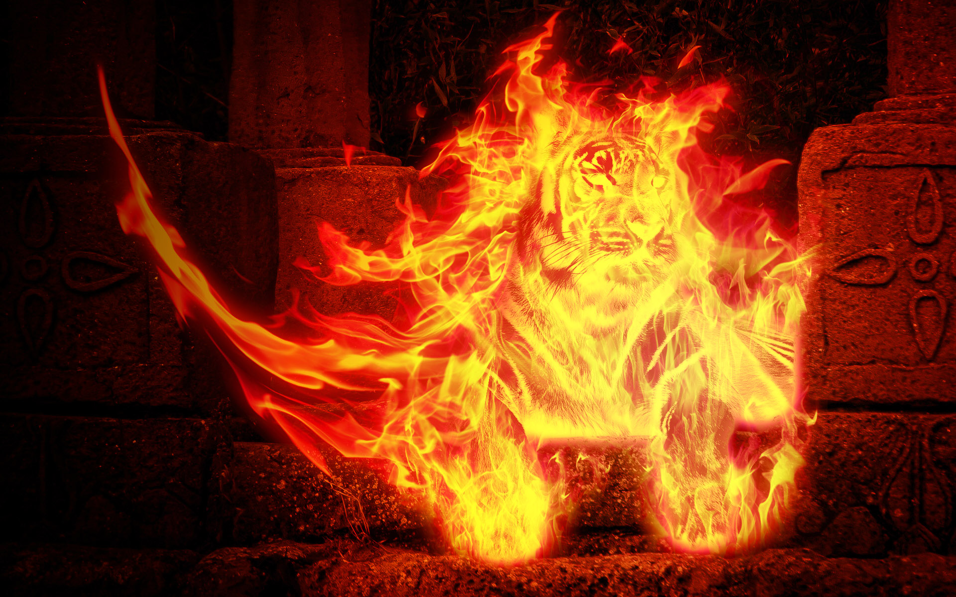 Satanic Iphone Wallpaper Burning Tiger Full Hd Wallpaper And Hintergrund