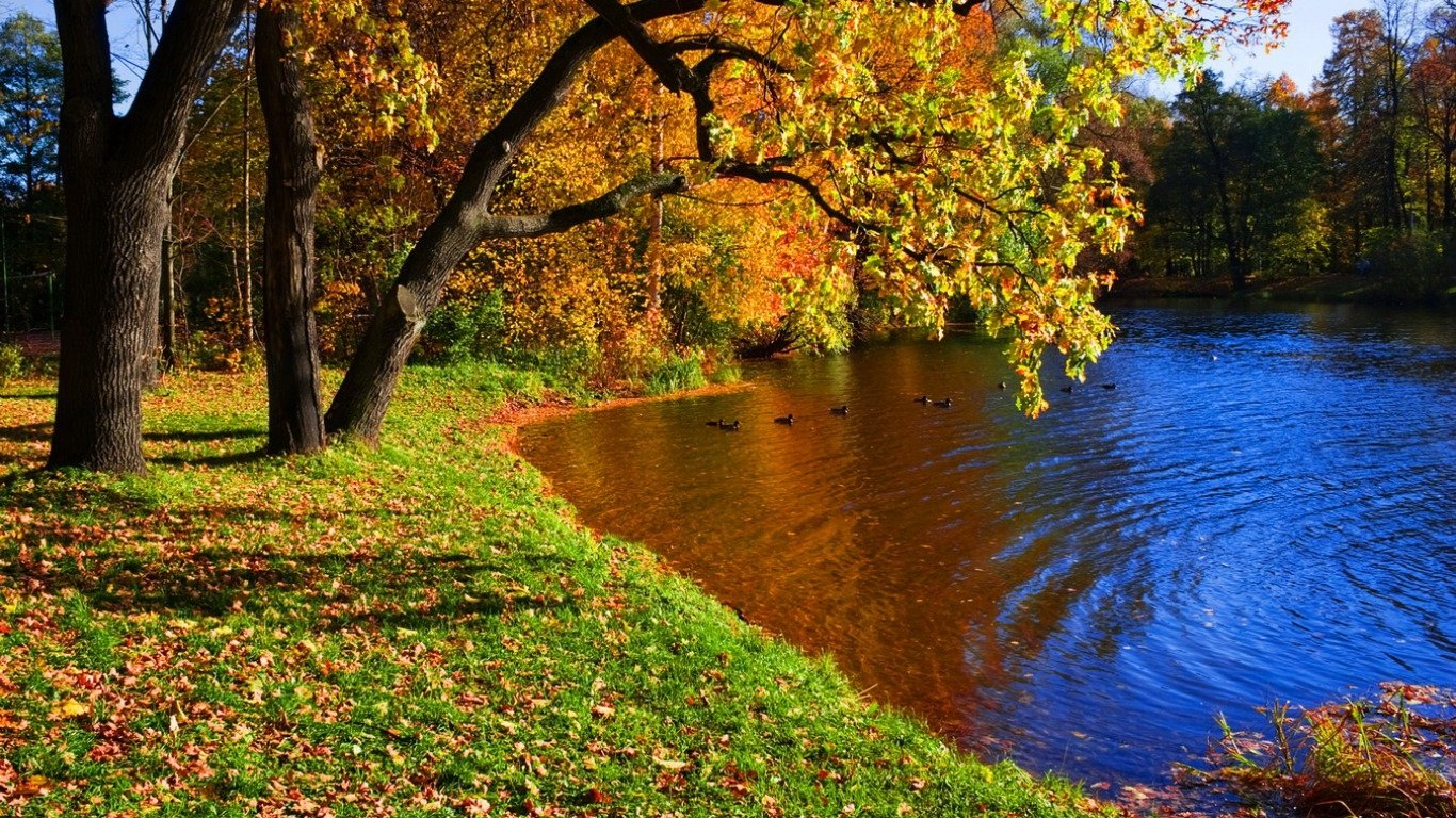 1440x2560 Uhd Wallpaper Fall A Pretty Autumn Day Wallpaper And Background Image