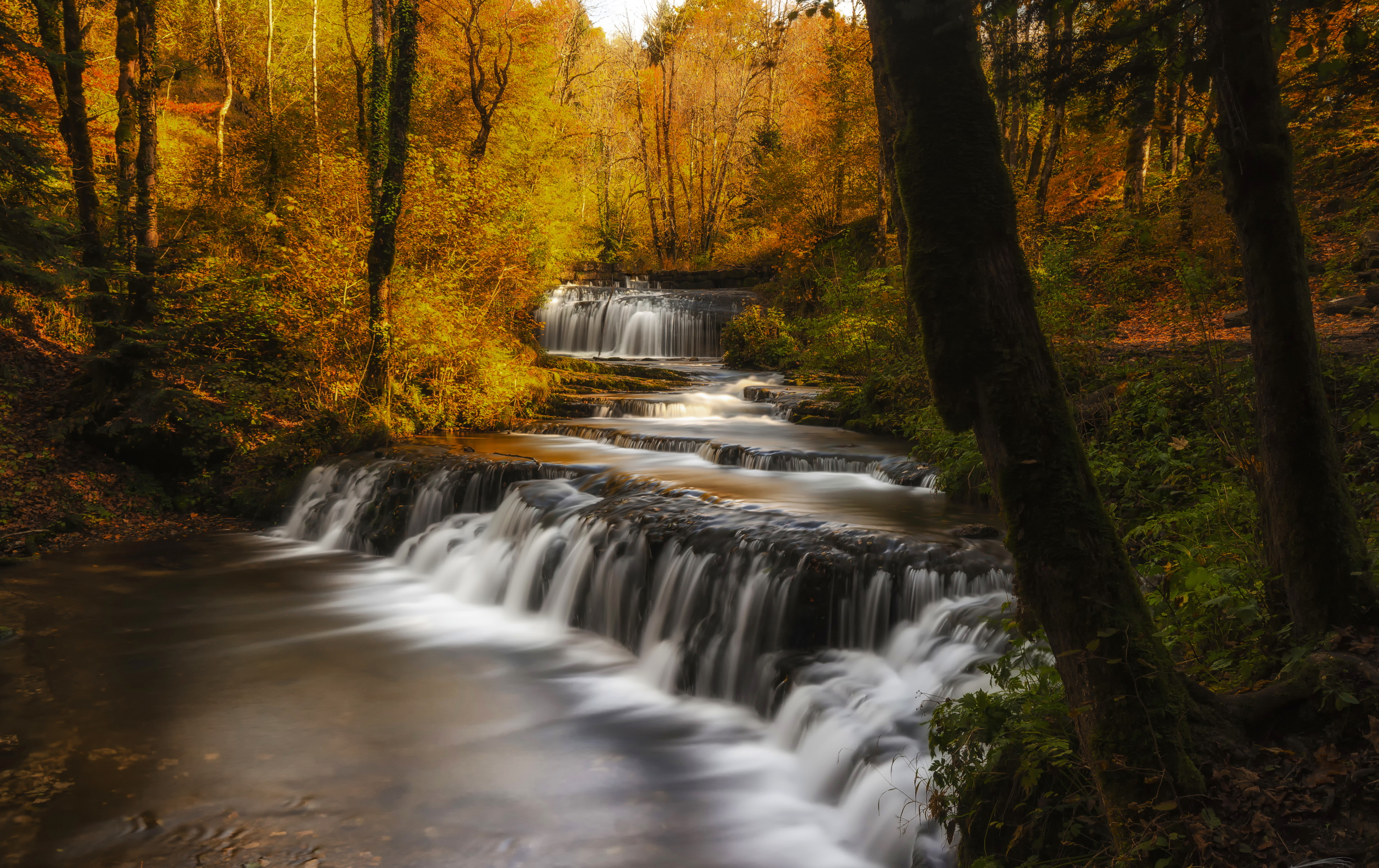 Windows 10 Fall Usa Wallpapers 4k Cascading Waterfall In Autumn Forest Full Hd Wallpaper And