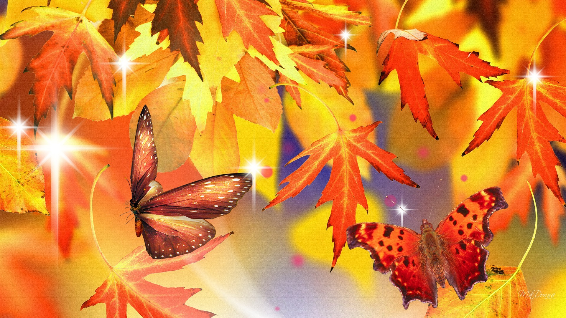 Fall Leaves Iphone 5 Wallpaper Autumn Leaves And Butterflies Hd Wallpaper Background