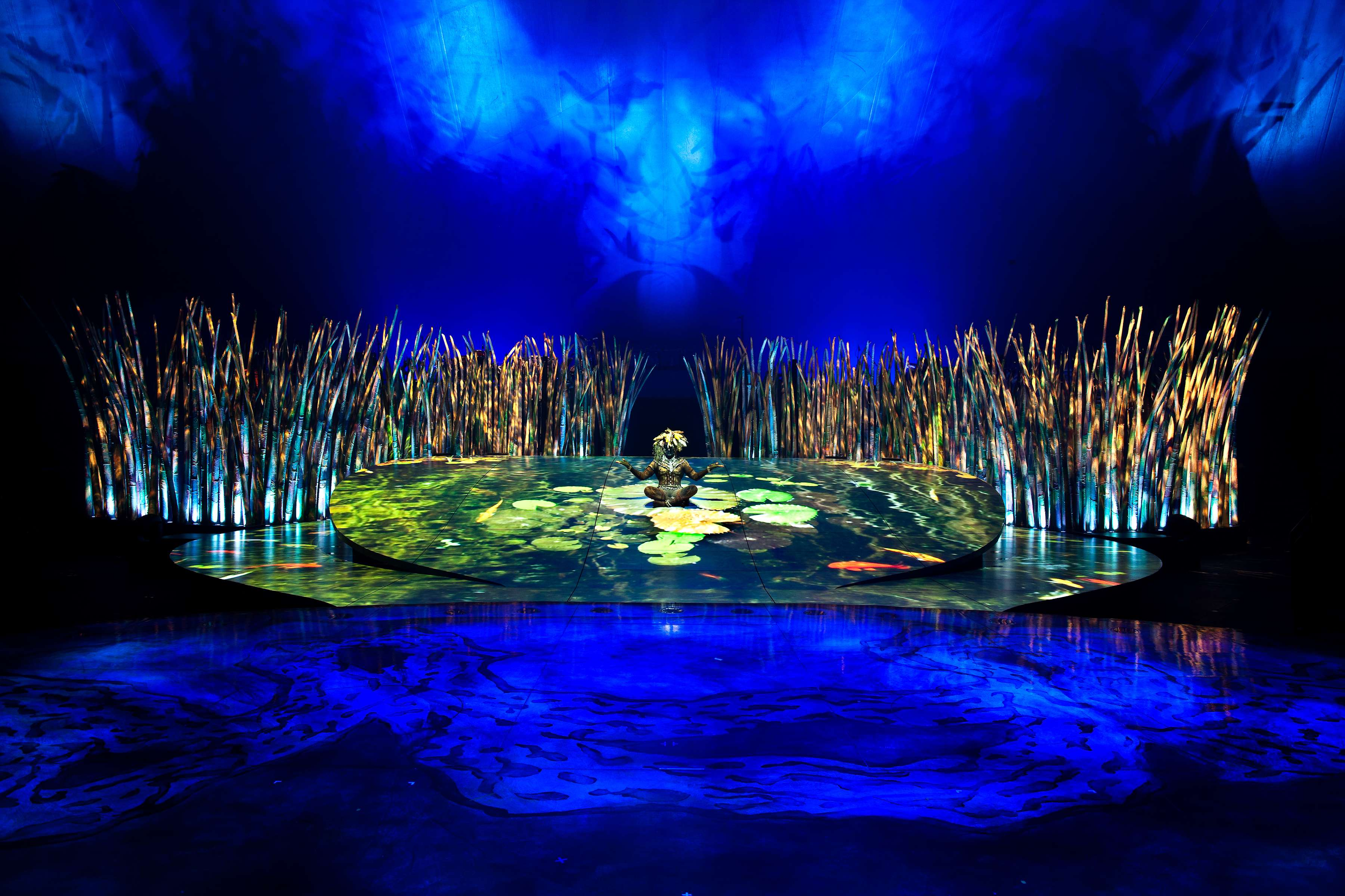 Michael Jackson Hd Wallpapers For Iphone 6 Cirque Du Soleil Totem Full Hd Fond D 233 Cran And Arri 232 Re