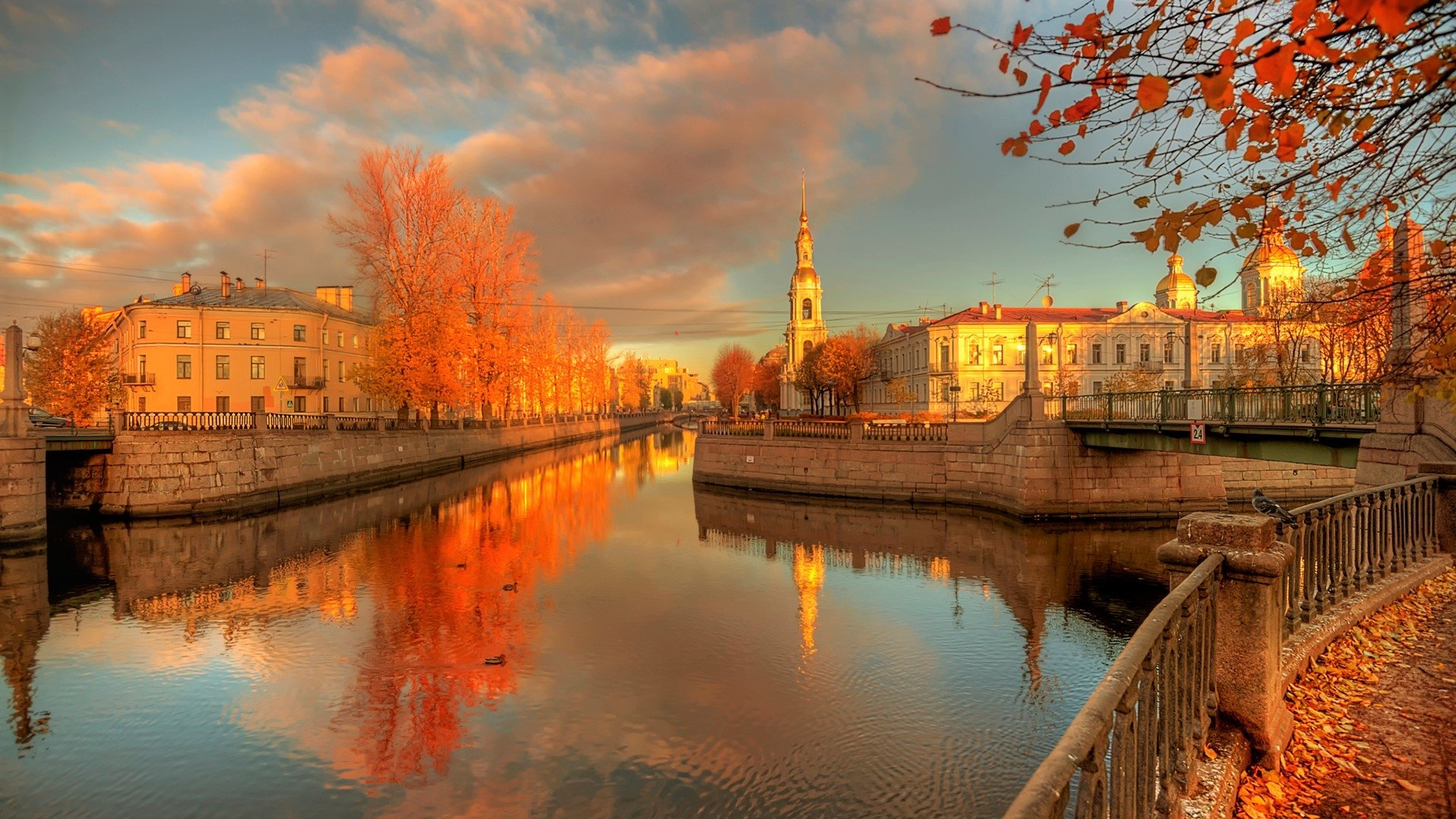 Iphone 6 Plus Fall Wallpaper Autumn In St Petersburg Russia Full Hd Wallpaper And