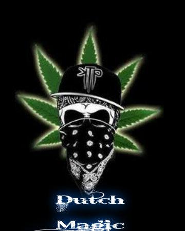 Lsd Wallpaper Iphone 6 Dutch Weed Marijuana Fan Art 33218396 Fanpop