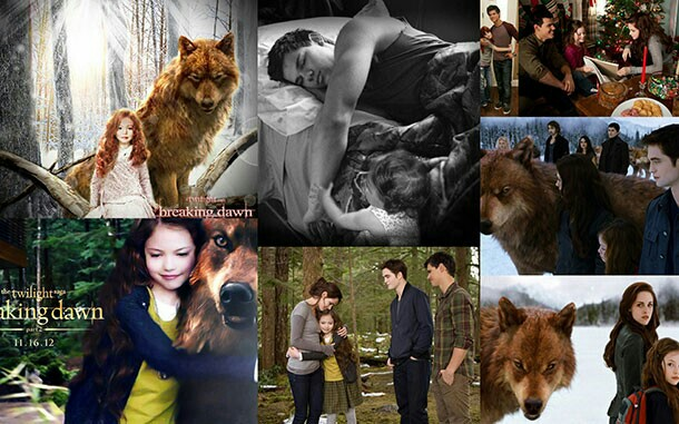 Wolf Of Wall Street Quotes Wallpaper The Twilight Saga Wolves Images Jacob And The Cullens