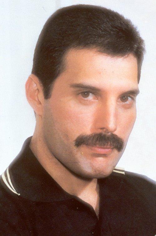 Moustache Wallpaper Hd I Love You Freddie Freddie Mercury Photo 36781048