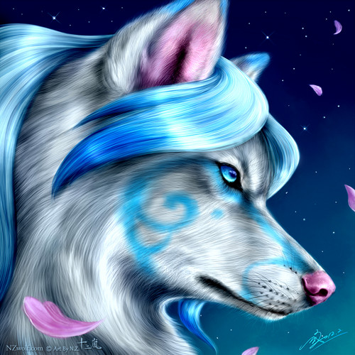 Black Cat Eyes Wallpaper Wolves Images Pretty Aqua Wolf Hd Wallpaper And Background