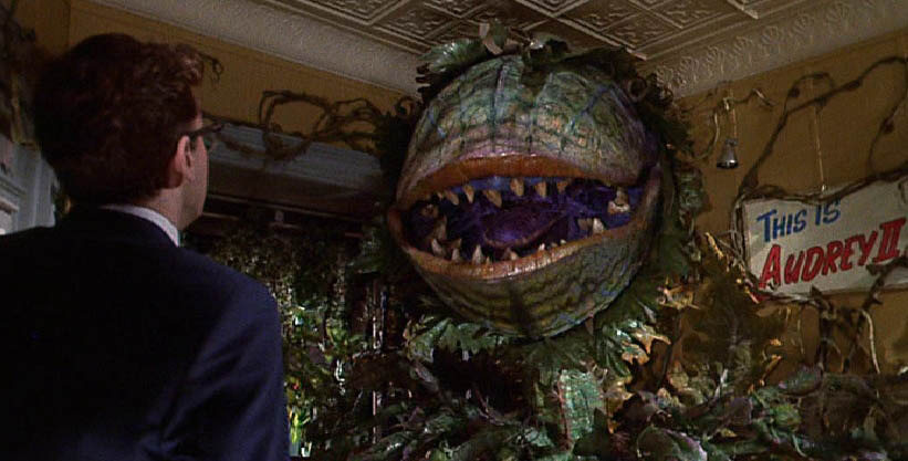 Motorcycle Girl Wallpaper Little Shop Of Horrors Images This Is Audrey Ii Wallpaper
