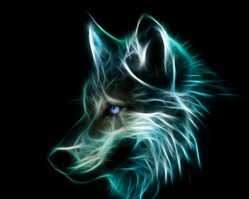 Animated Snow Wallpaper Wolves Images Neon Wolf Hd Wallpaper And Background Photos