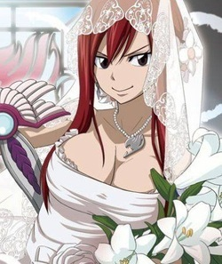 10 Year Girl Pregnant Photos Wallpapers Which Fairy Tail Wedding Dress Pic You Like The Most Erza