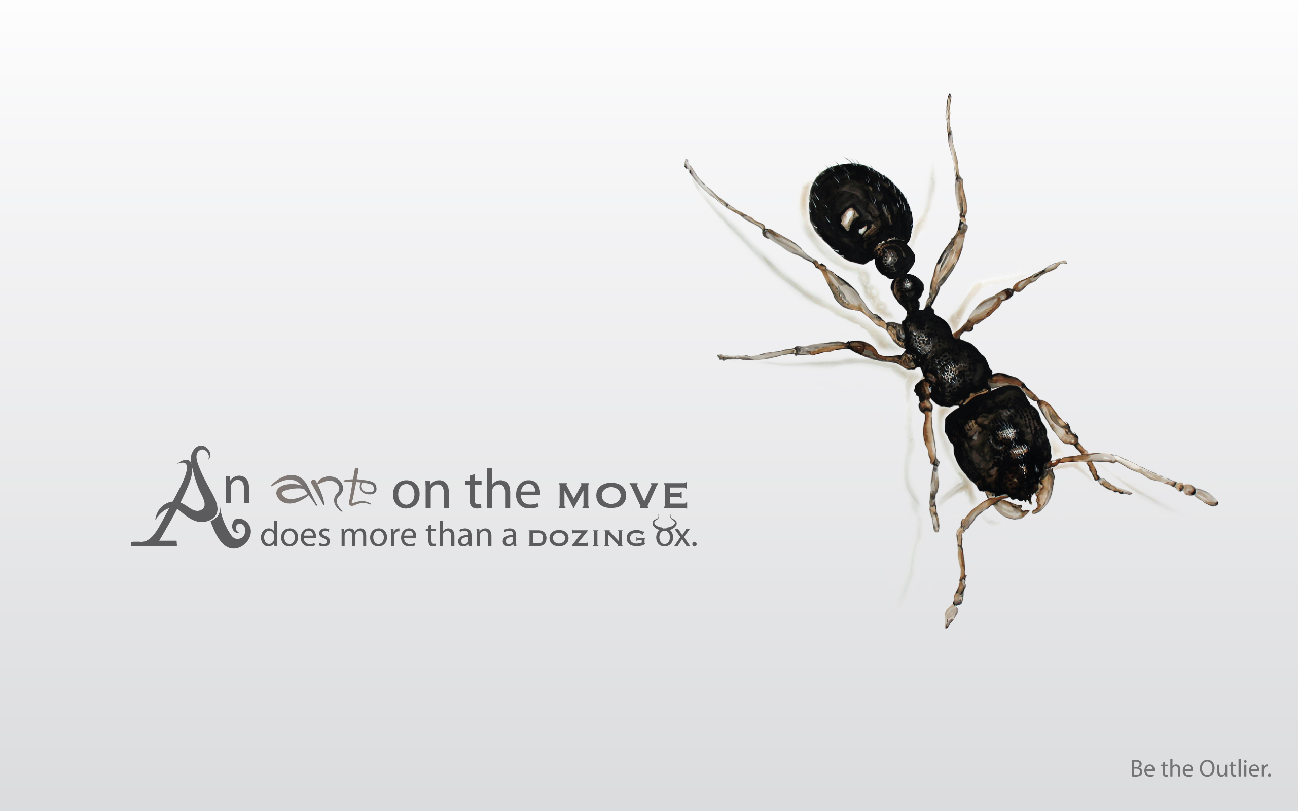 Inspirational Quotes Wallpapers Hd 1366x768 Ant Full Hd Wallpaper And Background Image 2560x1600