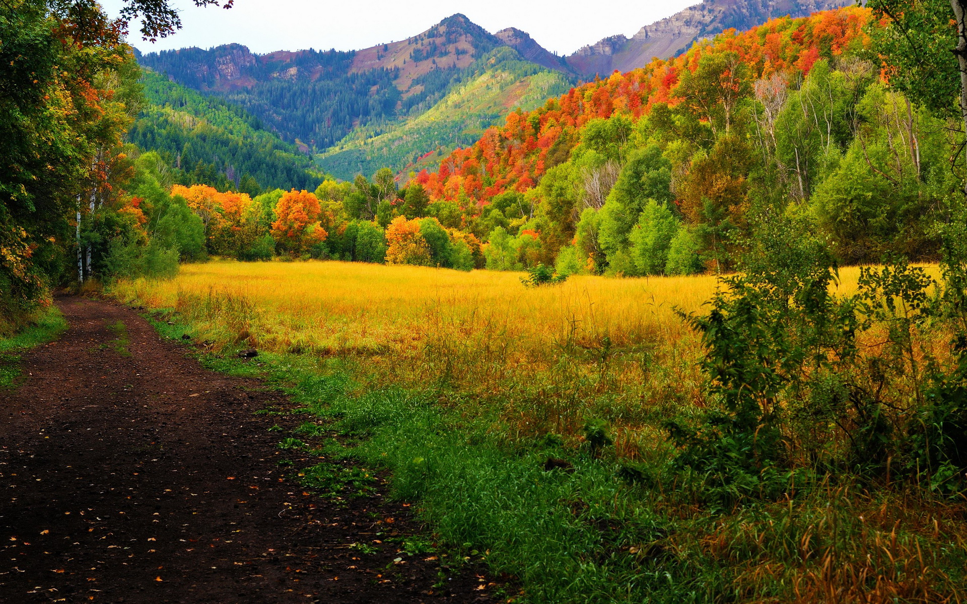 1280x1024 Fall Wallpaper Provo Canyon Fall Colors Full Hd Wallpaper And Background
