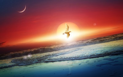 Between Sun and Moon HD Wallpaper | Background Image | 2560x1600 | ID:593320 - Wallpaper Abyss